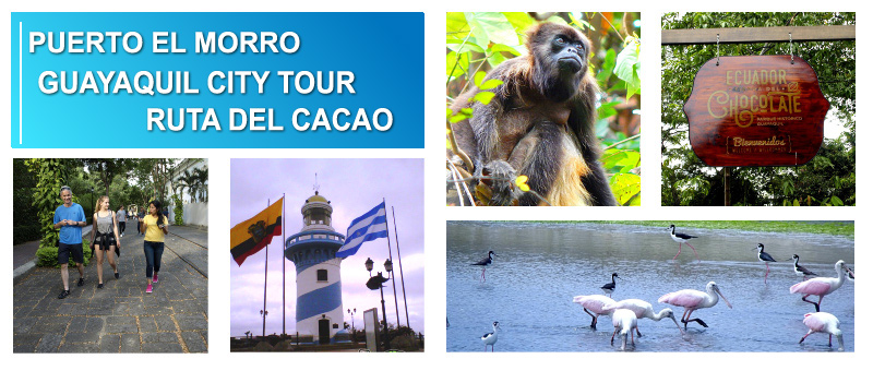 GUAYAQUIL TOURS